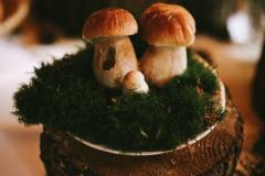 Hříbky z místního lesa